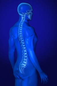 Back Pain Specialist X-ray